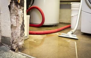 Costs Associated With Not Fixing Water Damage Quickly
